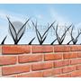 Pinches De Seguridad Puntas Púas Espina Protección Medianera