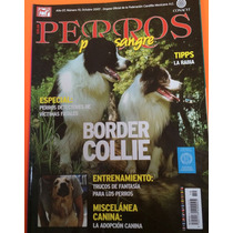 Boder Collie Edicion Octubre 2007 Y Noviembre 2014 Revista