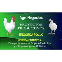 Inicia Negocio Pollos Proyecto Productivo Corrida Financier