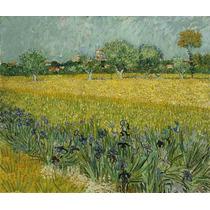 Lienzo Tela Campo Flores Arles Vincent Van Gogh 1886 50x60