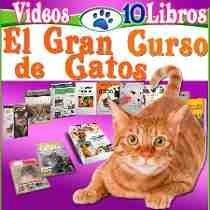 Libro: Aprende Todo Sobre Gatos 10 Libros Mas Videos 2017