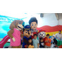 Shows Infantiles Paw Patrol, Peppa,mickey,my Little 71590838