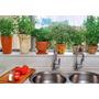 Aprende Huerto Maceta Casa Jardín Cultivo Siembra Urbano