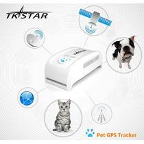 Collar Rastreador Localizador Gps Para Perros, Gatos Mascota
