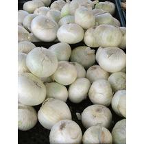 1 Lb Allium Cepa Cebolla Blanca - Sweet Spanish Codigo 479-a