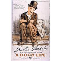 Poster Películas Clásicas Charles Chaplin 1918 79 X 50 Cm