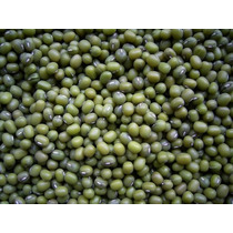 Semillas De Vigna Radiata (frijol Mungo) 1 Kg $62 Codigo 160