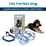The Perfect Dog Sistema Entrenamiento Para Perros