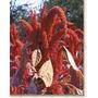 1 Lb Semillas Amaranthus Hypochondriacus (amaranto) C. 182-a