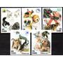 Cuba 2001. Animales Domésticos. Perros Y Gatos (5)