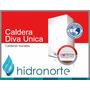 Caldera Peisa Diva Unica 32000 Tiro Forzado S/calefaccion