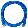 Patch Cord Cat 6 De 3 Metros. Nuevos Y Sellados