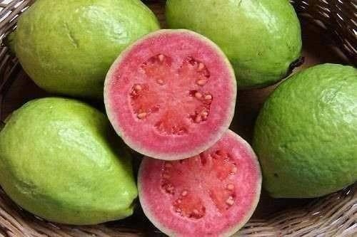 Manfaat Buah Guava Pada Kesehatan Tubuh