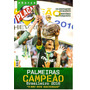 Poster Palmeiras Campeão Brasileiro 2016 = Placar 58x84 Novo