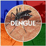 6.000 Sementes Crotalária Breviflora + 3 Espécies Adeus Zika