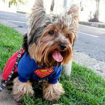 Fantasia Super Homem Para Cães