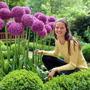 Flores Allium Gigante Globemaster Morado Pack Semillas