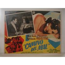 Ana Luisa Peluffo, Camino Del Mal , Cartel De Cine