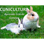 Aprende La Cria Del Conejo (cunicultura) 8 Ebook