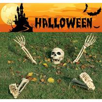 Halloween Calaca Calavera Esqueleto Dia De Muertos Oferta