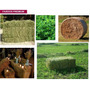 Vendo Fardos Premium De Alfalfa Produce: Servicios Agricolas