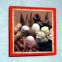 Placa Decorativa 27x27cm * Sorvetes Casquinhas * Photo