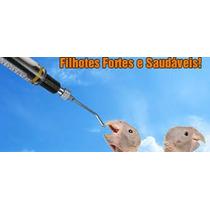 Kit Alimentador Profissional P/ Filhotes Pássaros Diversos