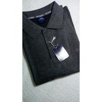 Chemises Polo