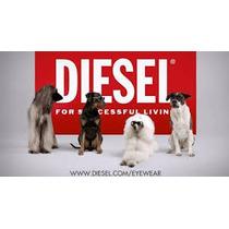 Armazon Lentes Diesel Seminuevos