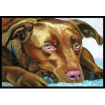Chocolate Labrador Que Espera Mat Interiores O Exteriores De