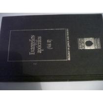 Borges: Evangelios Apócrifos Vol 2