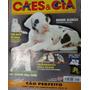 Revista Cães & Cia Nº 245 - Outubro/1999