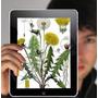 Enciclopedia De Plantas Medicinales Completa+obsequios Ebook