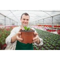 Maceta De Plastico Para Invernadero - Vivero Flexible 6 Pulg
