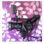 Camara De Video Profesional Panasonic Ag-dvx100b 450mil