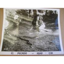 Candy Wilson Desnuda Foto En B&n El Pecado De Adan Y Eva 69