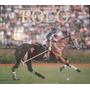 Polo - Abierto Argentino De Palermo 2005 De Garahan Y María