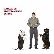 Manual Para Educar Y Entrenar A Tu Perro