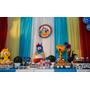 Cortina Para Decoração De Festas Infantis - 3m X 3m