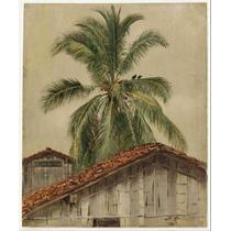 Lienzo Tela Frederic Edwin Church Palmeras Tejas 61 X 50 Cm