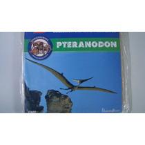 Rompecabezas 3d Pteranodon Tercera Dimension