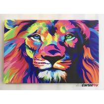 Cuadro En Lienzo Canvas 380 Grs. - León Multicolor 60x90