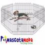 Corral Metálico Jaula Exagonal Para Perros Y Cachorros