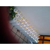 Mercurio Virgen Liquido Al 99.99% De Pureza