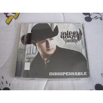 Ángel Fresnillo - Indispensable - Universal México 2009