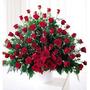 100 Rosas Importadas/ Flores