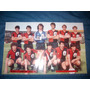 Newells Campeon 1987