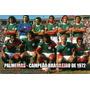 Pôster Palmeiras Campeão Brasileiro 1972