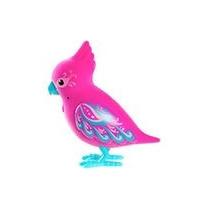 Pajarito Little Live Pet Bird