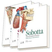 Livro - Atlas De Anatomia Humana - 3 Volumes